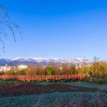Cangshan Mountain Foto
