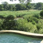 Private plunge pool overlooking the river
