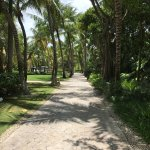 The beautiful path to our room. All guests get a golf cart to enjoy the property.