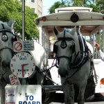 Springbrook Farms Horsedrawn Tours Foto