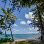 Beautiful Palm Cove beachfront