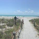 Foto di Turtle Beach