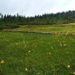 Photo of Tsugaike Natural Park