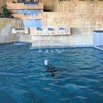 Photo de BlueWater Resort and Casino