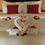 Towel swans greeted us on arrival.