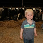 He loved the cows.