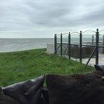 Photo of 't Veerhuis Lands End