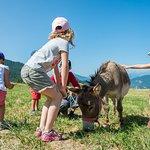 Mini ferme - Village Club Cap'vacances de La Plagne