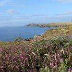 Cornish Coastal Path Harlyn