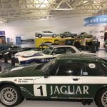 A few of of the racing Jaguars