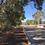 Photo of Cohunu Koala Park