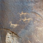 Some of the many petroglyphs