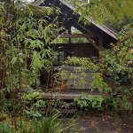 Foto de Volcano Teapot Cottage