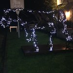 The Plough horse at night