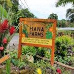 Hana Farms sign