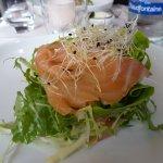 Entrée, salade saumon