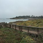 a path out to area where you can observe harbor seals