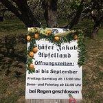 Schäfer Jakobs Apfelland - Öffnungszeiten
