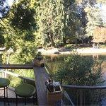 Photos from the outdoor cafe verandah