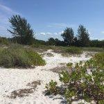 Captiva Island private beach area, very secluded.