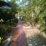 Foto di Palm Grove Eco Resort