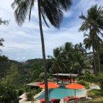 Photo de Jungle Club