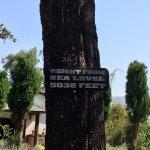 Club Mahindra Manipur Villa, Binsar