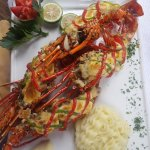 Gratinated Lobster - to die for!