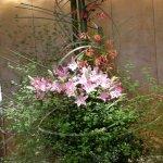 Wonderful flower display in the foyer