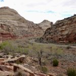Photo of Capitol Reef National Park
