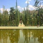 Foto de Ethnobotanical Garden