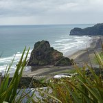 Beach and part of the Piha Domain Motor Camp