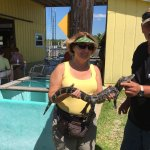 Foto de Speedy's Airboat Tours