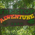 Treetop Adventure Park | Highest, Tallest, and Fastest Ziplines in St. Lucia