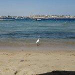 Helnan Marina Sharm Foto