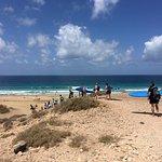 Photo of FreshSurf Surf School