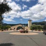 Napa valley wine limousine tours