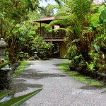 Foto de Lotus Garden Cottages
