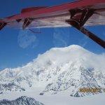 Denali Range from the plane