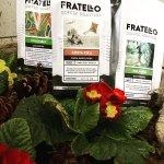 Fratello Coffee Roasters