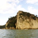 Photo of Cathedral Cove Scenic Cruises
