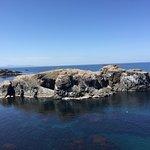 圧倒的な海の透明度