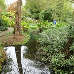 There were watery parts and gunnera.