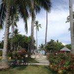Photo de Dos Palmas Island Resort & Spa
