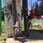 Zdjęcie Santa Cruz / Monterey Bay KOA