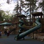 part of their playground