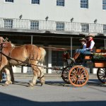 The Strand is no stranger to horse & buggy traffic