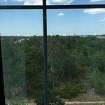 Foto van Hilton Garden Inn Lake Buena Vista/Orlando
