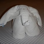Housecleaning makes these adorable towel animals!