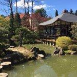 Japanese Bonsai Garden (Japanischer Bonsaigarten)